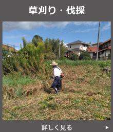 草刈り・草抜き・伐採